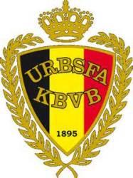 Belgium 2014 World Cup Emblem